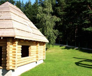 Следующий этап строительства бани - возведение крыши.  Она имеет форму как в два ската, так и в один...