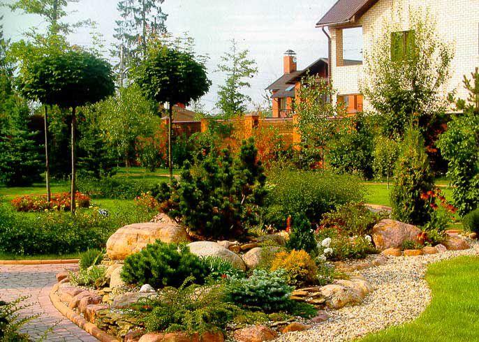 Какие растения сочетаются в ландшафтном дизайне