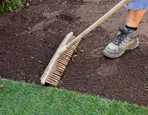 Как посадить газонную траву на даче своими руками 32